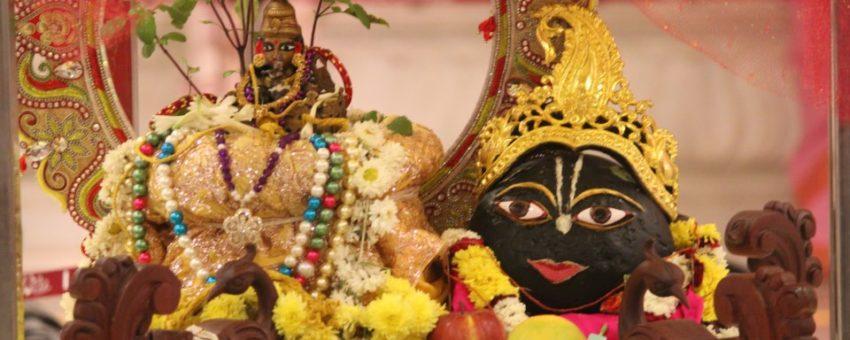 Tulasi Saligrama Vivaha